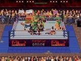PC Federation wrestling