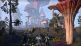 XONE The Elder Scrolls Online: Morrowind