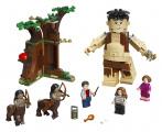 LEGO Harry Potter TM 75967 Zapovězený les: Setkán